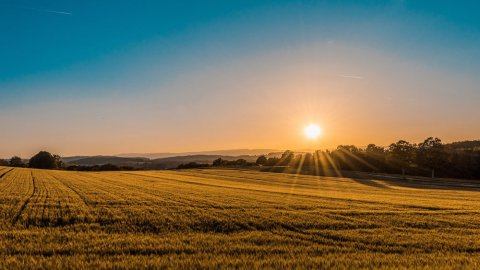 how to buy land blog photo of peaceful rural field