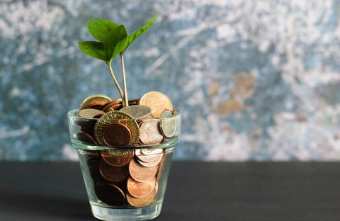 simple tips to save money blog photo of tiny plant growing out of money